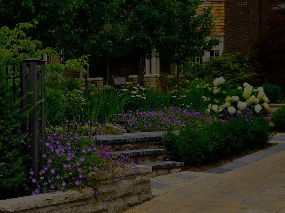 Bushland Commercial Garden Design